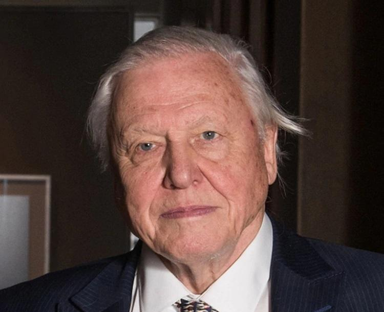 David Attenborough comunicador e historiador de la naturaleza